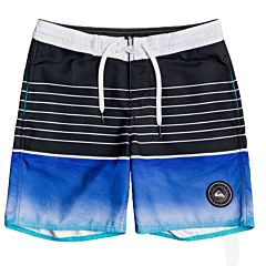 Quiksilver Youth Swell Vision Boardshorts - Black - front